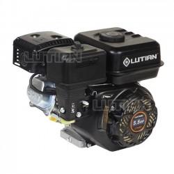 Motor benzină LT170F Lutian